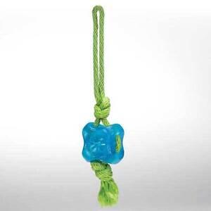 Grriggles Fundamentals Treat Tug Pet Toy, Bluebird, US2156 19