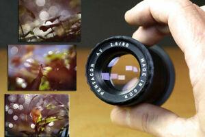 Bokeh wie Trioplan, Pentacon AV f2.8 80mm Canon EF (EOS) adapted