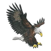 Toppe termoadesive - aquila uccello sta volando - marrone - 6,3x5,5cm - Patch To