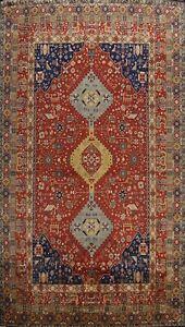 Tribal Geometric Agra Oriental Area Rug Vegetable Dye Handmade Wool Carpet 10x14