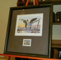 PINTAILS WALTER WOLFE SIGNED AND NUMBERED, MIGRATORY BIRD HUNTING, CONSERVATION