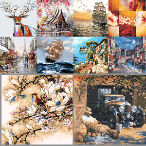 New DIY Paint By Numbers Kit Digital Oil Painting Artwork Wall Home Decor Adult