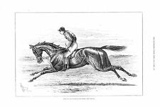 Bend Or - Winner of the Derby - by John Sturgess   - 1880 Antique Print
