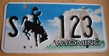 "WYOMING  STATE GOV. LICENSE PLATE "" S 123 ""  WY WYO NEAT LOW  NUMBER OFFICIAL"
