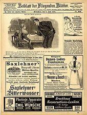 Saxlehner`s Bitterwasser Hunyadi János Nordseebäder Westerland Wenningstedt 1895