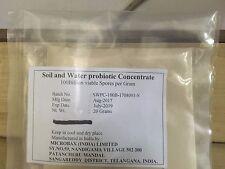 Soil and Water Probiotic Concentrate 4 Antibiotic Free Indoor Aquaculture 20 gm