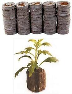 36mm Jiffy Peat Pellets, Seed Starter Soil Plugs, Easy To Transplant