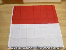 Fahnen Flagge Schweiz Solothurn - 120 x 120 cm