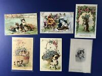 6 BIRTHDAY Cats & Dogs Antique Postcards 1900s. Collector Items. Nice w Value!