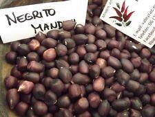 Erdnuss - Negrito Manduvi Peanut - 5+ Samen - FEINE RARITäT!
