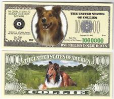 Dollar Collie, One Million Doggie Bones