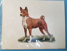 Basenji Hound Dog Lithograph Art Print Picture by Ole Larsen 1950's
