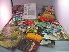 Vintage Russian Postcard Set: Flowers & Plants USSR 1973 20 Information Cards