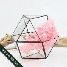 Modern Tabletop Glass Terrarium Planter Box Decorative Flower Pot Black