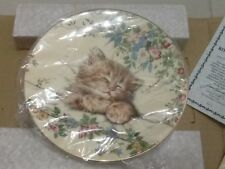 Royal Worcester Cat Nap bone china plate 1st in series Mint boxed & certificate