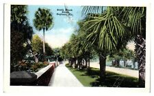 1918 South Beach Street, Daytona, FL Postcard *251