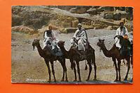 Afrika Ägypten Egypt AK Beduinen auf Reise 1909 Kamele Tracht Kleidung Beduin