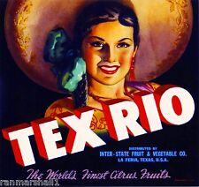 La Feria Texas Tex Rio Senorita Orange Citrus Fruit Crate Label Art Print