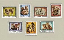 Hungary 1976. Wild Animals wonderful set MNH (**)  Michel: 4 EUR !!!