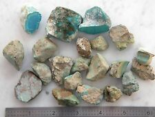 Turquoise Stabilized Rough Various Types old stock 1970's 192 Gram up to 1.50""