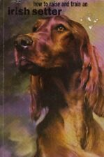 Irish Setter (How to Raise & Train S.) by Gannon, Robert Paperback Book The Fast