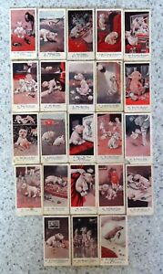 1923 John Player Cigarette Cards:  BONZO DOGS  (23 from set of 25)