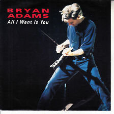 """BRYAN ADAMS  All I Want Is You PICTURE SLEEVE 7"""" 45 rpm record BRAND NEW RARE!"""