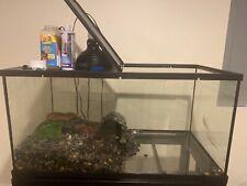 40 gallon reptile tank