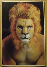 Carte postale Lion, peinture sur corps,Giordano,3000 ex. CPSM
