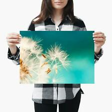A3  Beautiful Cool Dandelion Flower - Size A3 Poster Print Photo Art Gift #3860