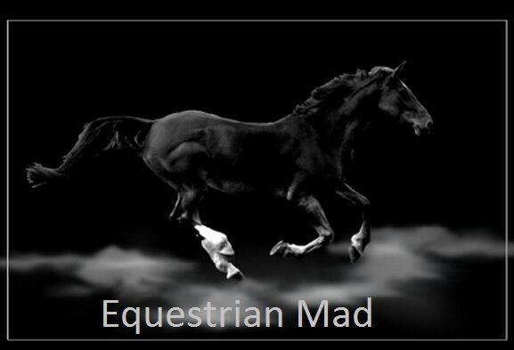 Equestrian Madness