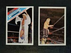 1988 Wonderama NWA - Ric Flair & Ricky Morton (2 card set)