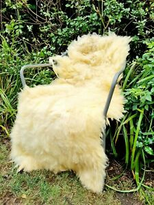 XXXXL British Yellow Sheepskin Rug - 130cm by 75cm A++ (2941)