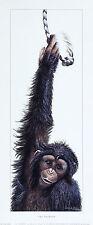 WARWICK HIGGS Swinger chimpanzee Humour Nursery art SIZE:11cm x 32cm  RARE