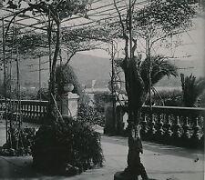 MONACO c. 1950 - Pergola Jardin Terrasse Monté Carlo DIV 4886