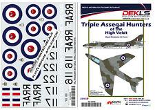 1/48 Hawker Hunter - Triple Assegai Hunters of the High Veldt RhAF Decals