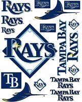Tampa Bay Rays Iron On T Shirt Pillowcase Fabric Transfer Set #1