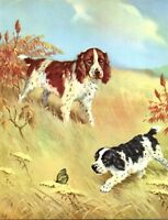Springer Spaniels Chasing Butterfly Field Field Wesley Dennis Book plate print
