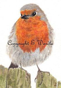"""ACEO ' Robin' Bird CANVAS PRINT of Original Watercolour 2.5"""" X 3.5"""" By E.Wardle"""