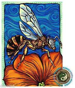 © ART - bee wasp Insect - Original Artist Print by Di
