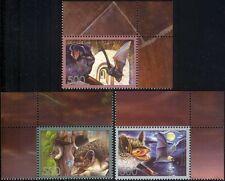Belarus 2006 Bats/Wildlife/Animals/Nature/Conservation 3v set (n16281a)