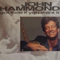 John Hammond - Got Love If You Want It (CD 1992 Pointblank Virgin) MINT