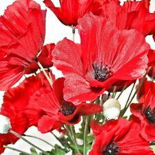 50 Artificial 62cm Flame Red Poppy Flower Stems - Great Value bigger pack