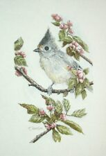 Original Pen & Ink & Watercolor Tufted Titmouse & Apple Cindy Thomasik Bird