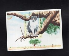 Grenada 2000 Scottish Fold Cat Minisheet MNH  Sc 3059