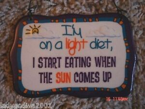 I'm On A Light Diet,  I START EATING WHEN THE SUN COMES UP - novelty sign-Ganz