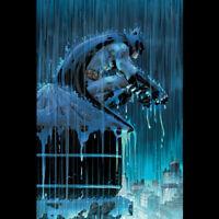 John Romita Jr. Batman: Two Storms Giclee On Paper Signed