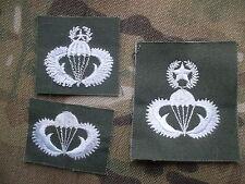Issued NATO Militaria Badges