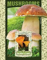 Solomon Isl 2016 MNH Mushrooms Boletus Cantharellus 1v S/S Fungi Stamps