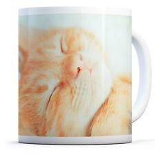 Sleeping Ginger Kitten - Drinks Mug Cup Kitchen Birthday Office Fun Gift #15913
